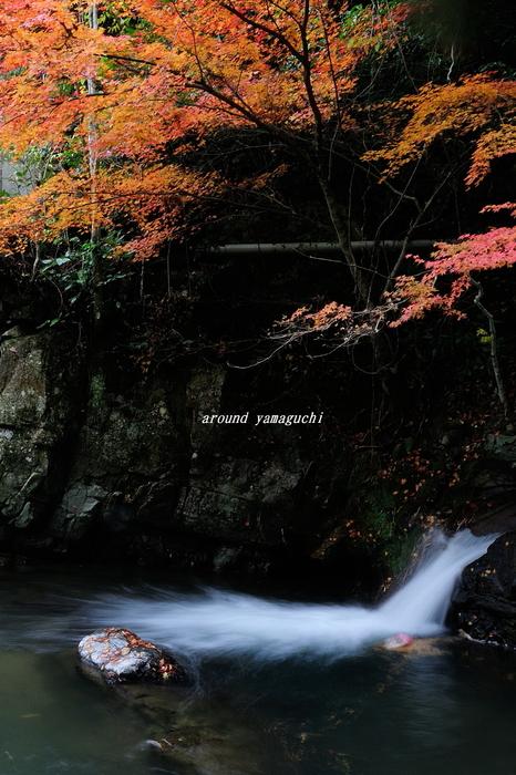 五段の滝04.jpg