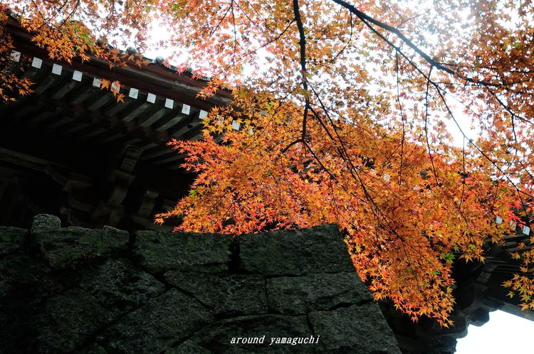 俵山西念寺05.jpg