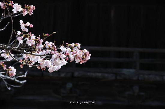 功山寺02.jpg