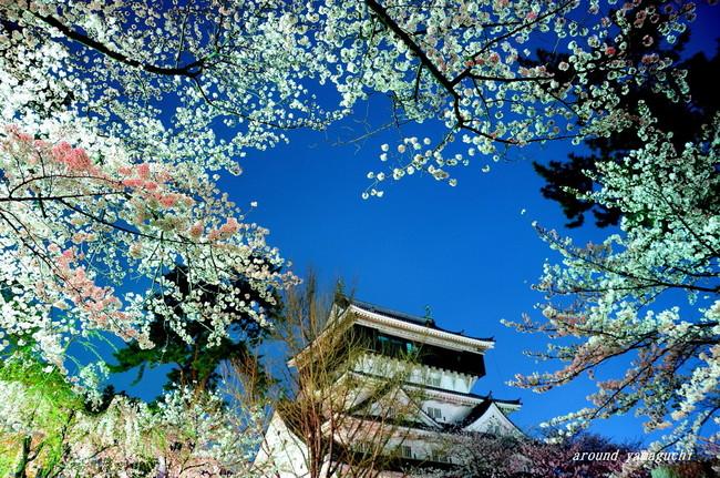 勝山公園03.jpg