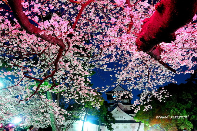 勝山公園06.jpg