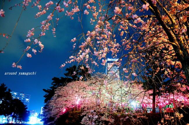 勝山公園07.jpg
