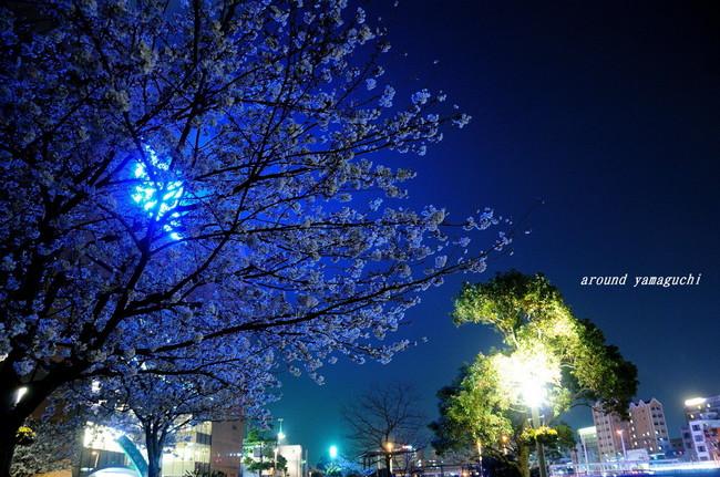 勝山公園09.jpg