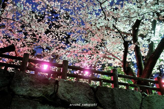 勝山公園16.jpg