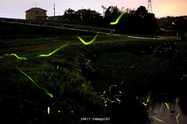 厚狭ほたるⅡ04.jpg