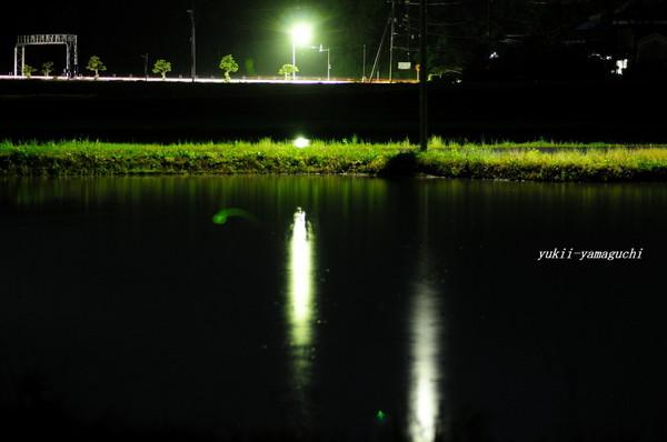 厚狭ほたるⅡ06.jpg