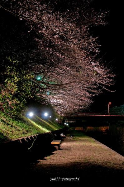 厚狭川06.jpg