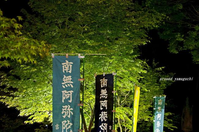 吉祥寺新緑07.jpg