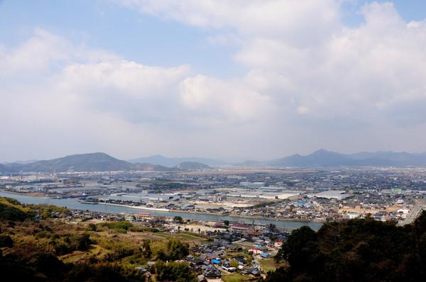 向島小学校寒桜 175.JPG