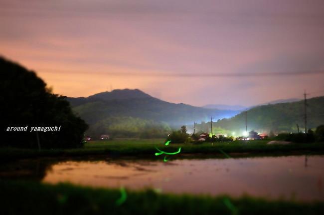 小野ほたる風景05.jpg