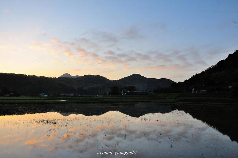 小野ホタル04.jpg