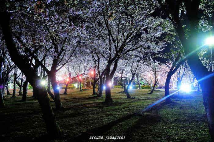 常盤公園06.jpg