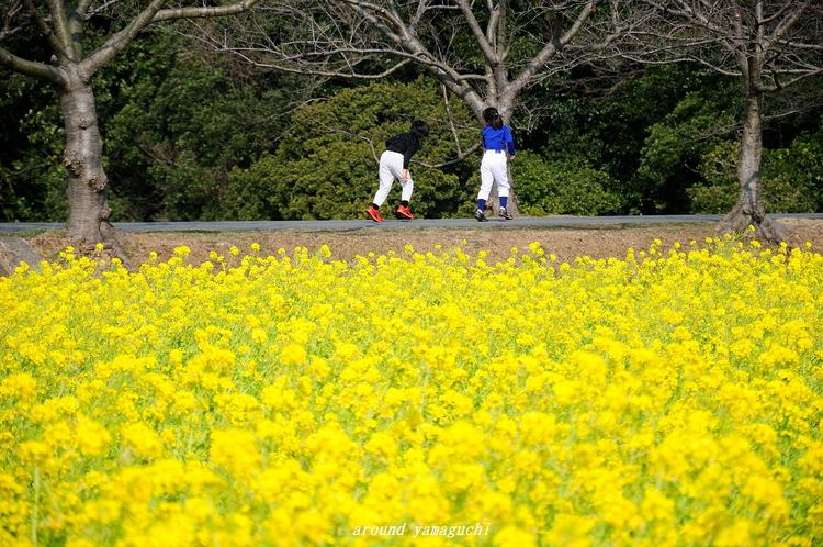 常盤公園09.jpg