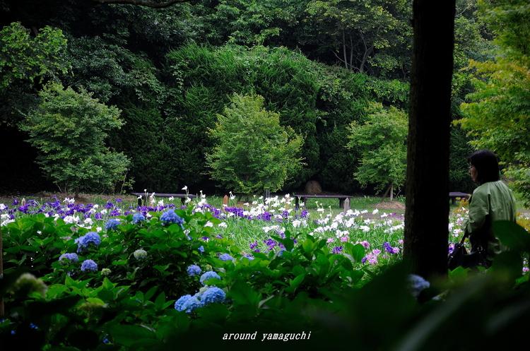 常盤公園11.jpg