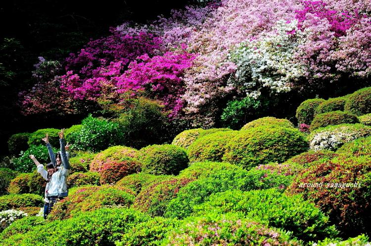 御船山楽園09.jpg