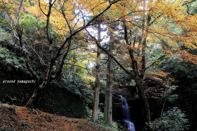 徳仙の滝01.jpg
