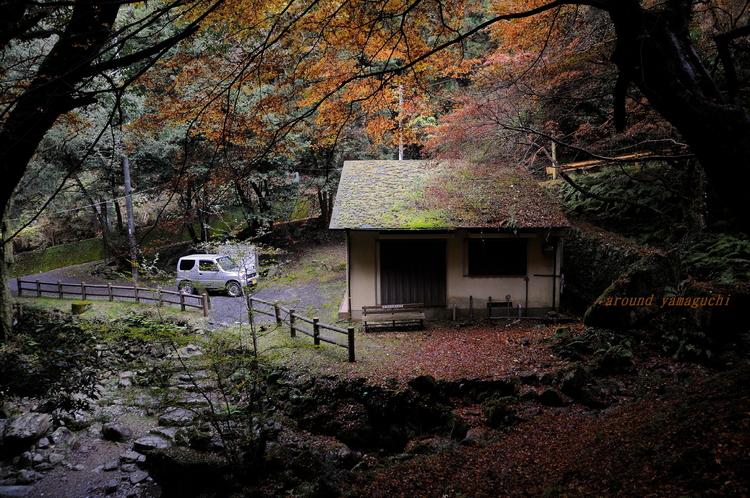 徳仙の滝05.jpg