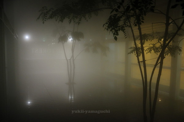 情報芸術センター夜の部02.jpg