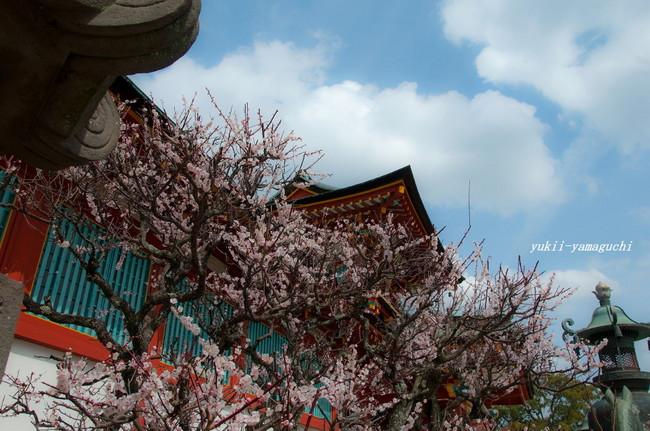 春分の日25.jpg