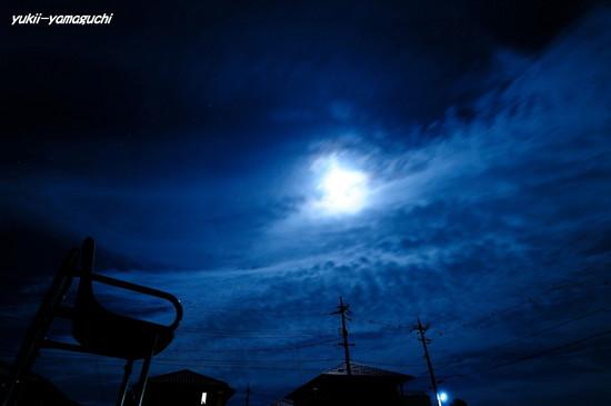 月明かり01.jpg