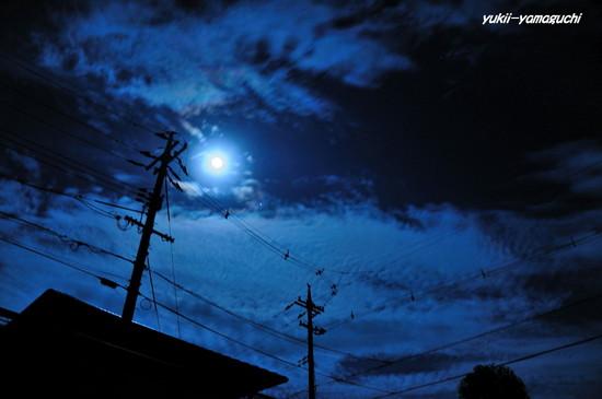 月明かり02.jpg
