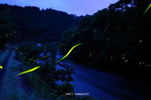 木屋川01.jpg