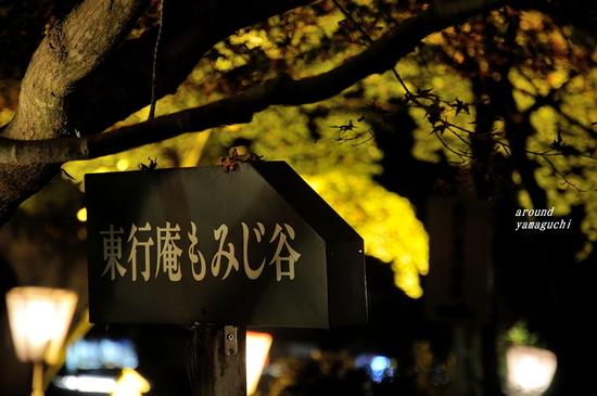 東行庵11.jpg
