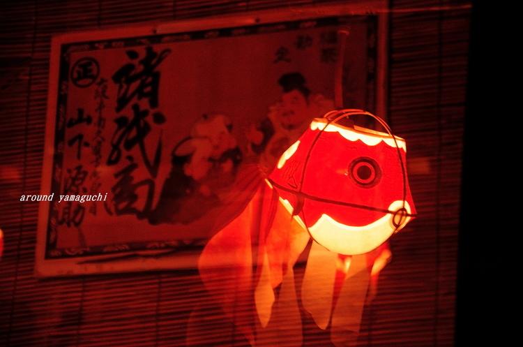 柳井金魚夜17.jpg