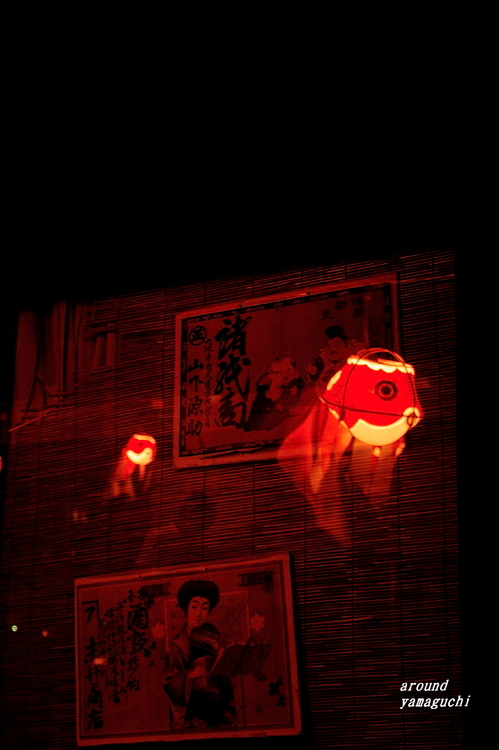 柳井金魚夜19.jpg