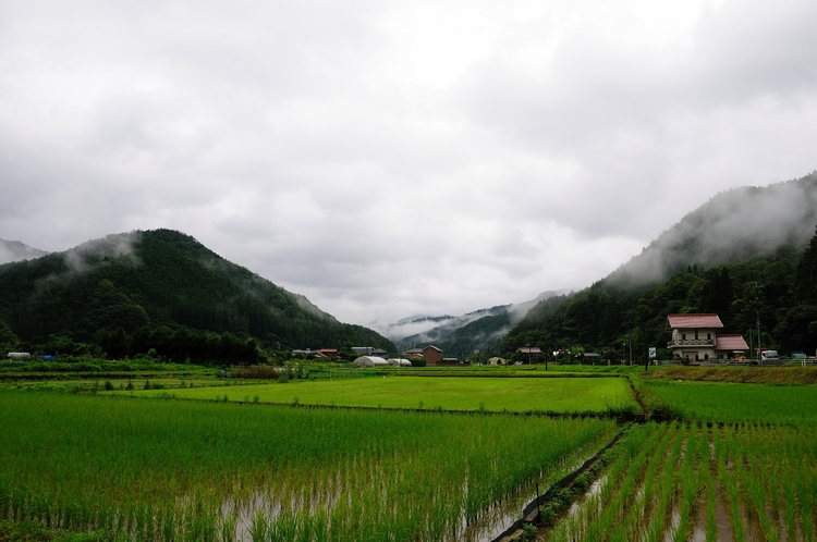 梅雨空.jpg