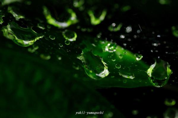水滴01.jpg