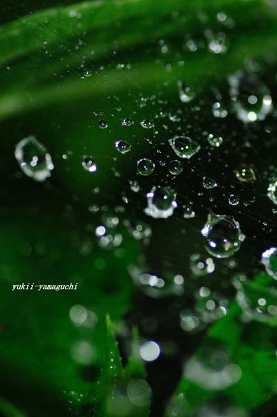 水滴02.jpg