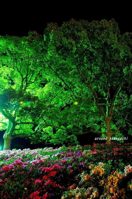江汐公園夜08.jpg