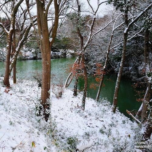 江汐大雪03.jpg