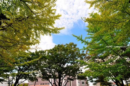渡辺翁02.jpg