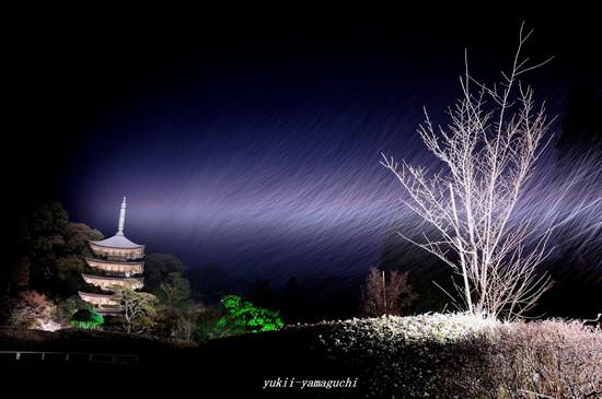 瑠璃光寺09.jpg