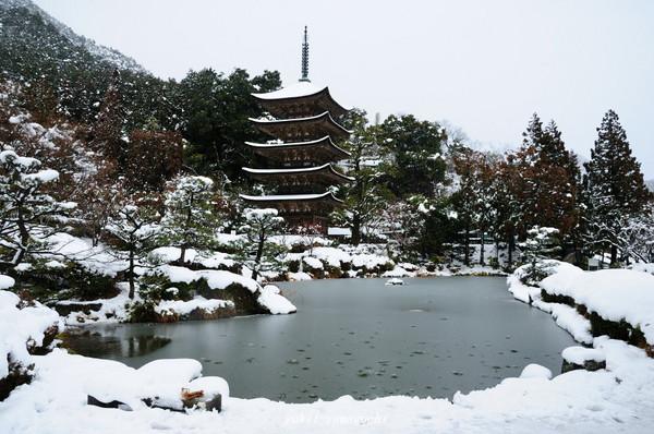 瑠璃光寺雪景色07.jpg