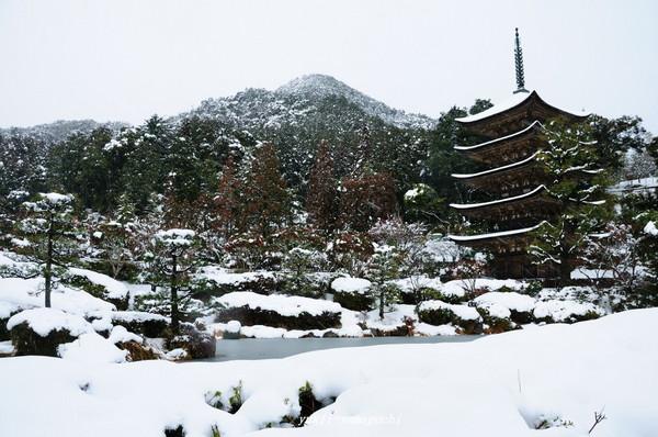 瑠璃光寺雪景色08.jpg