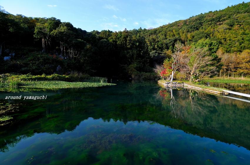 白水の池01.jpg