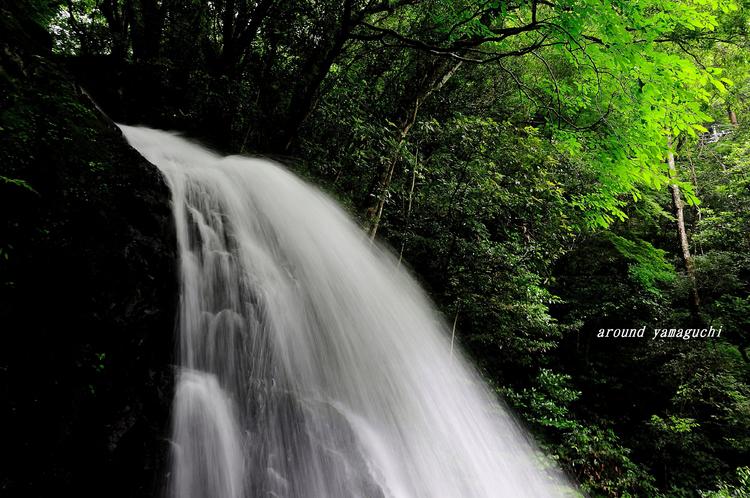 白糸の滝02.jpg