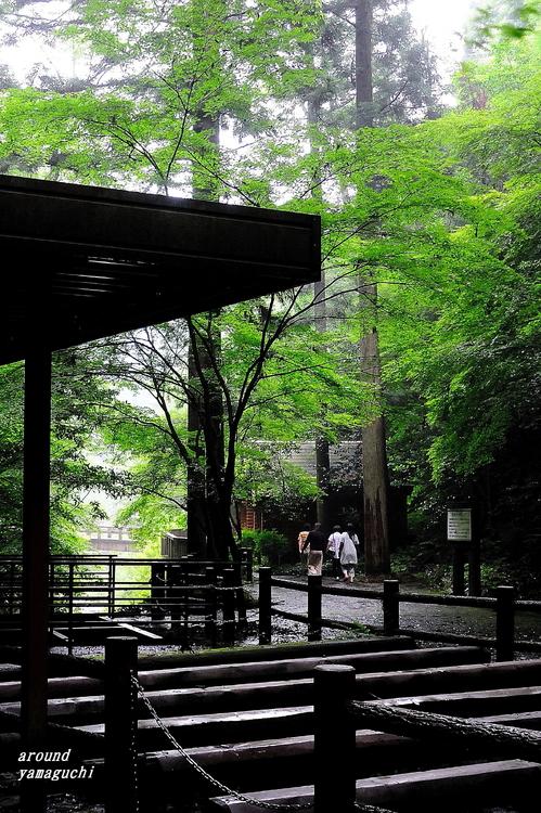 白糸の滝10.jpg