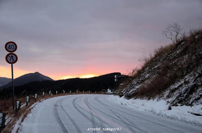 秋吉台雪06.jpg