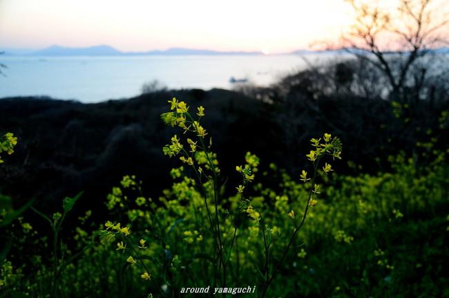 竜王山01.jpg