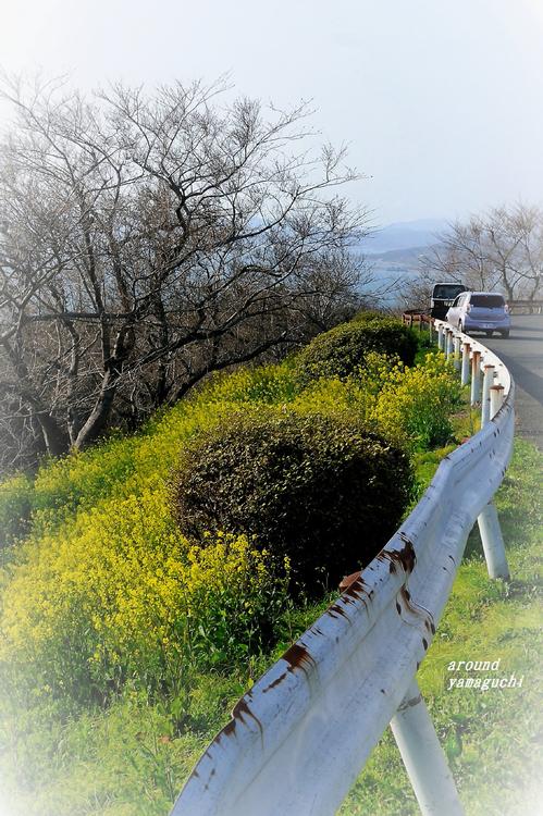 竜王山05.jpg