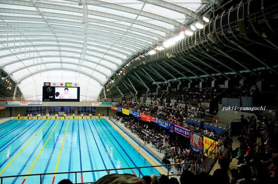 競泳03.jpg