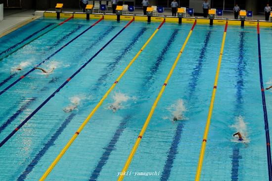 競泳05.jpg