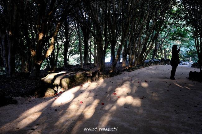 笠山01.jpg