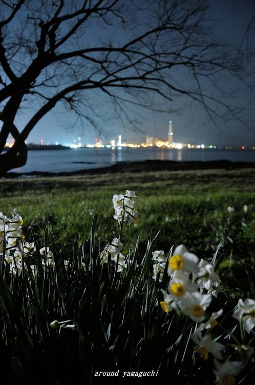 縄地夜08.jpg