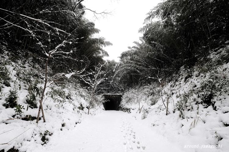 船鉄廃トンネル15.jpg