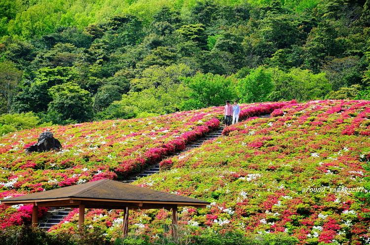 菅無田公園05.jpg